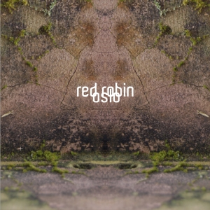 red_robin-Oslo